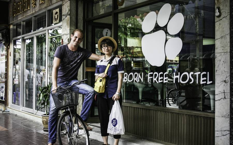 Born Free Hostel - Vista, Bangkok, Thailand, best travel website for independent and small boutique hostels in Bangkok