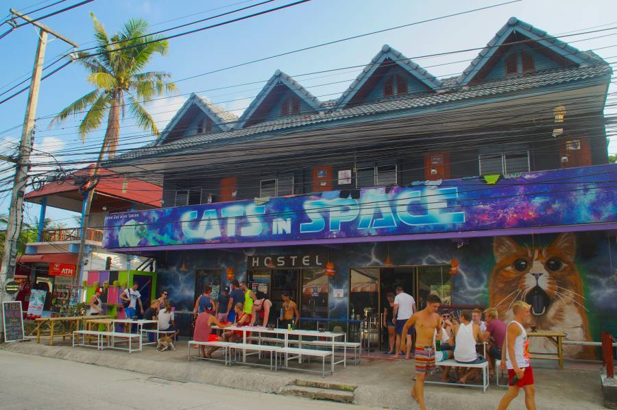 Cats in Space, Ko Phangan, Thailand, best hotels for vacations in Ko Phangan