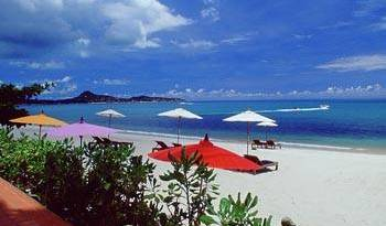 Samui Sense Beach Resort - Search available rooms for hotel and hostel reservations in Amphoe Ko Samui 10 photos