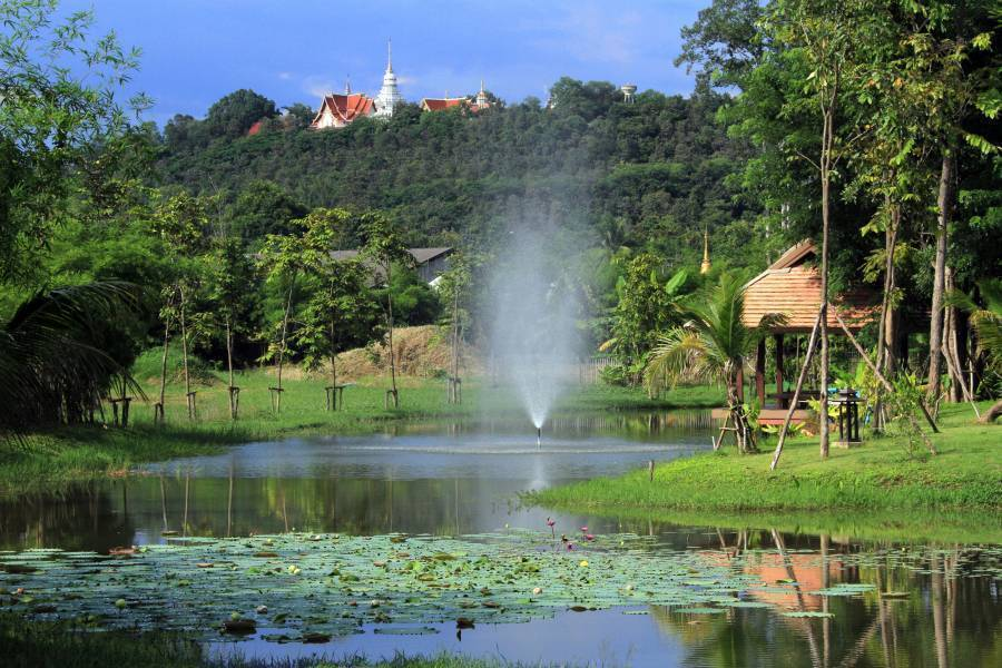 Jasmine Hills Villas Ans Spa, Doi Saket, Thailand, local tips and recommendations for hostels, motels, backpackers and B&Bs in Doi Saket