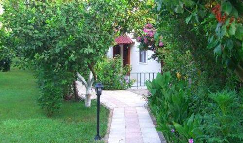 Blue Paradise Pension - Get low hotel rates and check availability in Cirali, cheap lodging 7 photos