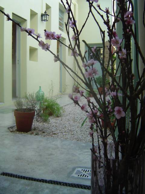 Palermo Viejo Bed and Breakfast, Buenos Aires, Argentina, hotels with culinary classes in Buenos Aires