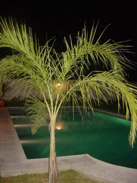 Poncho Huasi, Cerrillos, Argentina, find many of the best hotels in Cerrillos