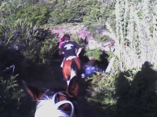 Refugio El Manu, San Carlos de Bariloche, Argentina, Лучший механизм бронирования отелей в San Carlos de Bariloche