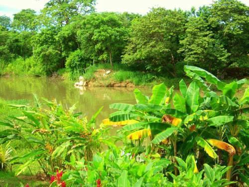 Spiritwind Reef Resort, Dangriga, Belize, cheap deals in Dangriga