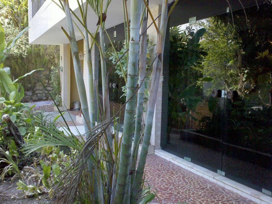 Charitas Inn, Niteroi, Brazil, Brazil hotels and hostels