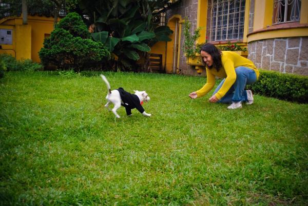 Motter Home Curitiba Hostel, Curitiba, Brazil, Jakie są najbezpieczniejsze obszary lub dzielnice hoteli w Curitiba