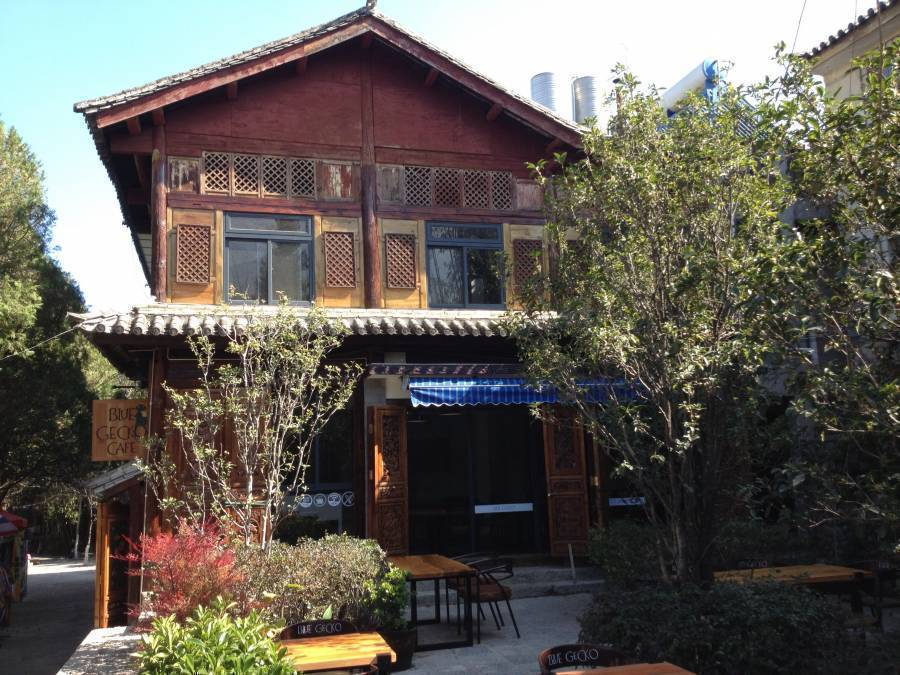 Blue Gecko - Sleepyfish Suites, Dali, China, China hotels and hostels