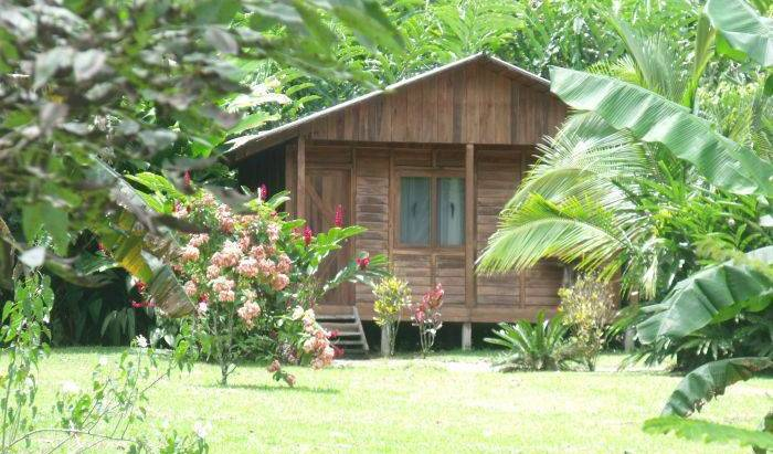 Cataratas Bijagua Lodge - Search available rooms for hotel and hostel reservations in Bijagua 34 photos