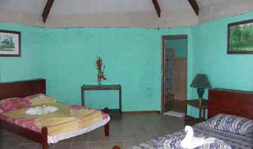 Hostel El Icaco - Search available rooms for hotel and hostel reservations in Tortuguero 3 photos