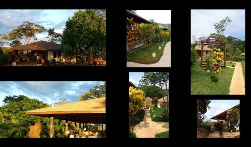 Lodge Margouillat, explore hotels with pools and outdoor activities in Domínica 31 photos