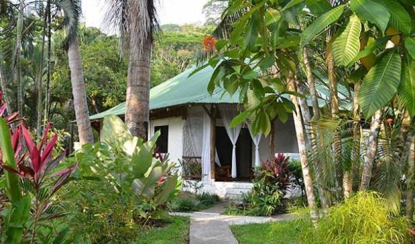 Wellness Center - Search available rooms for hotel and hostel reservations in Dominica, hotels and rooms with views 15 photos