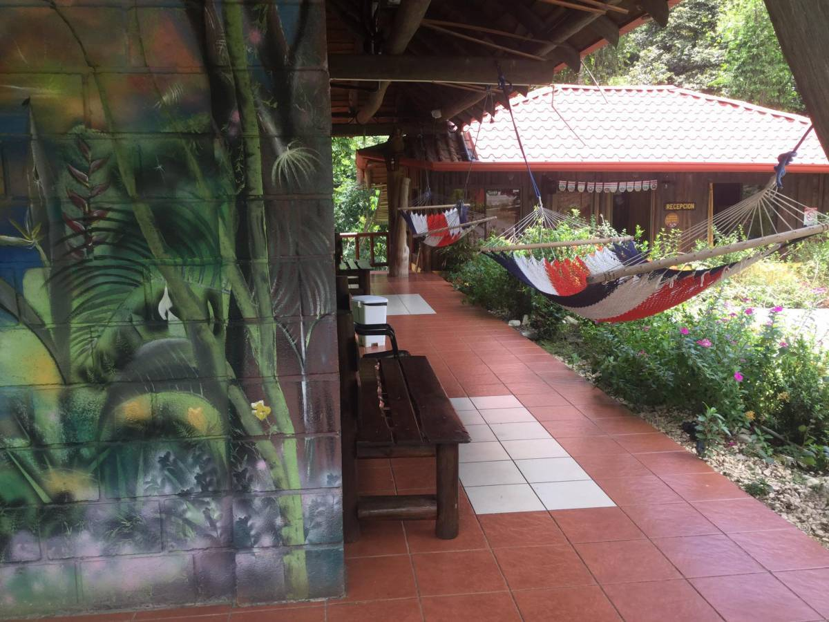 Hacienda Coopeagri, Uvita, Costa Rica, cool hostels for every traveler who's on a budget in Uvita