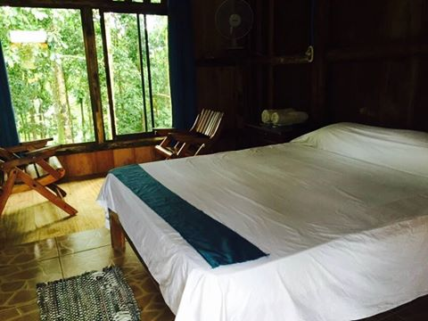 Hotel del Bosque, Rio Cuarto, Costa Rica, Costa Rica hotels and hostels