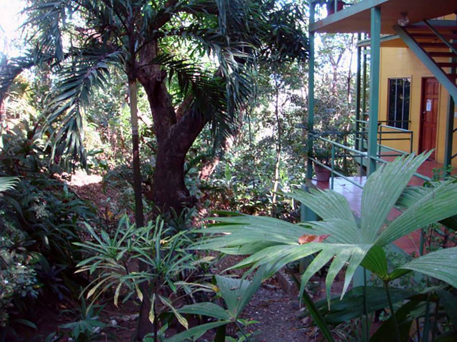 Hy Paradise Inn, Manuel Antonio, Costa Rica, Costa Rica hotels and hostels