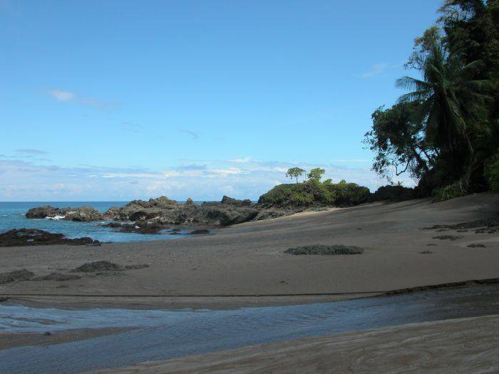 Wellness Center, Dominica, Costa Rica, long term rentals at hotels or apartments in Dominica