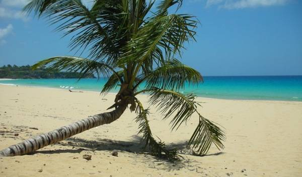 Dominican Nest - Get low hotel rates and check availability in Sosua 6 photos