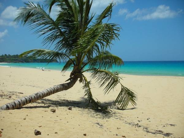 Dominican Nest, Sosua, Dominican Republic, Dominican Republic hotels and hostels