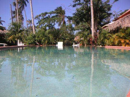 Hotel La Tortuga, Las Terrenas, Dominican Republic, Dominican Republic hotels and hostels