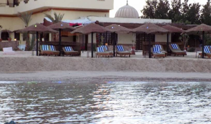 Dolphin Beach Hotel - Get low hotel rates and check availability in Bur Safajah 72 photos