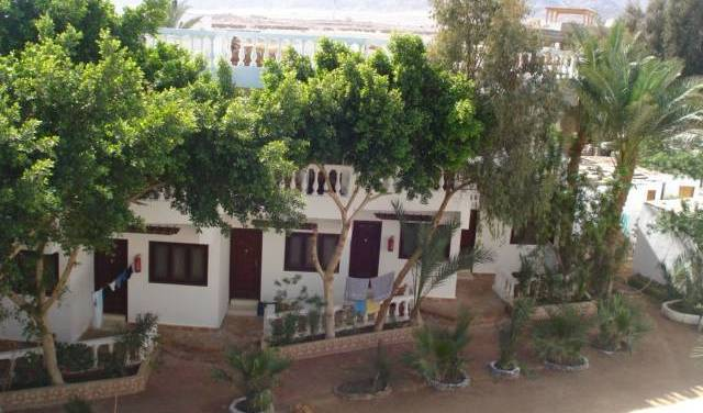 Seven Heaven Hotel - Get low hotel rates and check availability in Dahab 45 photos