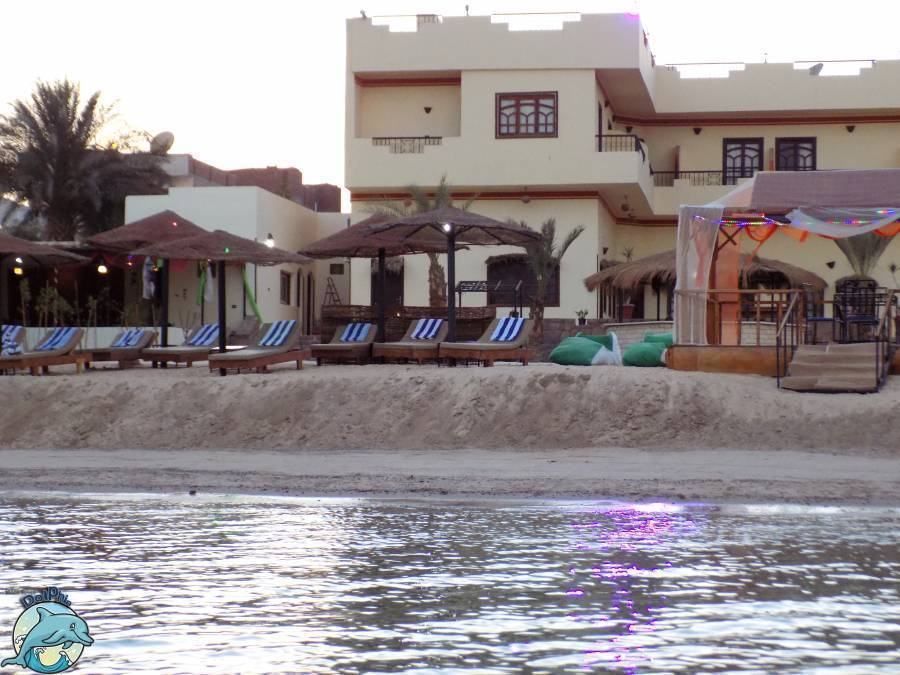 Dolphin Beach Hotel, Bur Safajah, Egypt, family history trips and theme travel in Bur Safajah
