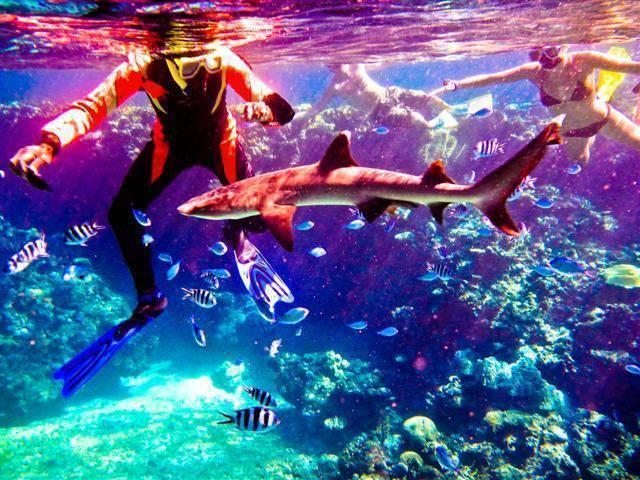 Naqalia Lodge, Lautoka, Fiji, Fiji hoteles y hostales