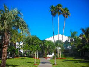 Beachcomber Beach Resort, Saint Pete Beach, Florida, Florida hotels and hostels