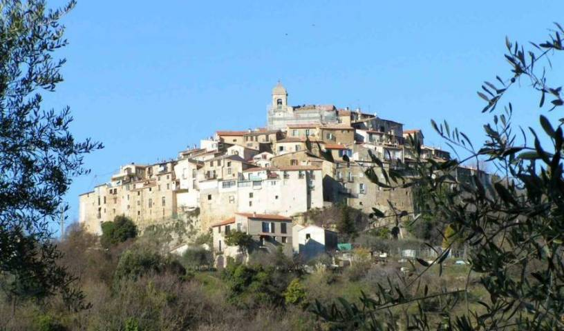 Gite in Provence 1 photo
