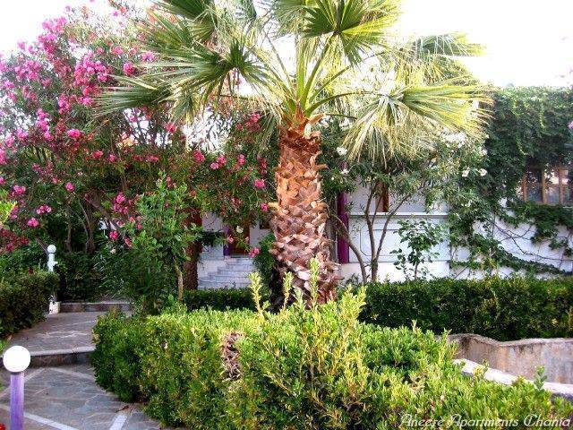 Aneexe Apartments Chania, Chania, Greece, Greece hotels and hostels