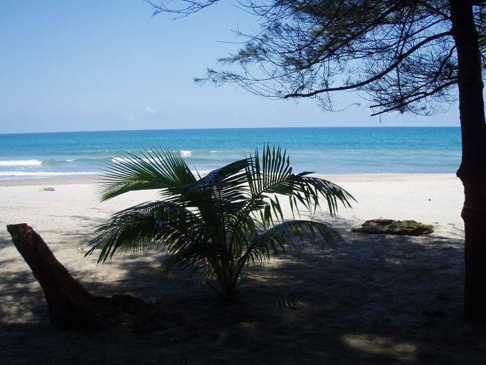 Caribbean Coral Inn, Tela, Honduras, Honduras hostels and hotels