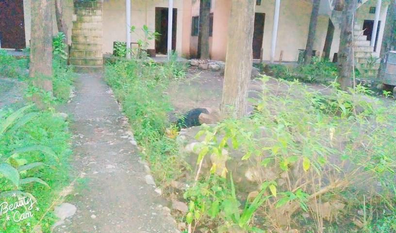 Corbett Jungle Inn - Search for free rooms and guaranteed low rates in Ramnagar 37 photos