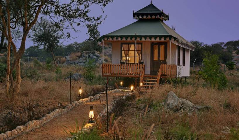 Jawai Leopard Safari Lodge - Search available rooms for hotel and hostel reservations in Pali 14 photos