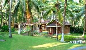 Kairali - The Ayurvedic Healing Village - Get low hotel rates and check availability in Chittur 10 photos