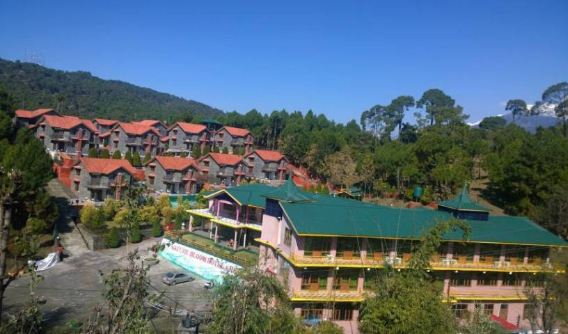 Nature Bloom Hotel and Resorts - Search available rooms for hotel and hostel reservations in Devidanda, K?ngra, India hotels and hostels 5 photos