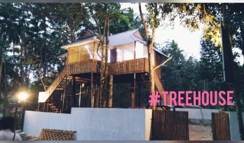 Ponmudy Valley Resort - Få lave hotelpriser og tjek ledighed i Thiruvananthapuram, Technopark, India hoteller og vandrehjem 1 Foto