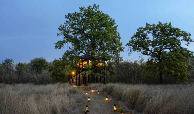 Pugdundee Safaris - Pench Tree Lodge - Get low hotel rates and check availability in Waraseoni 20 photos