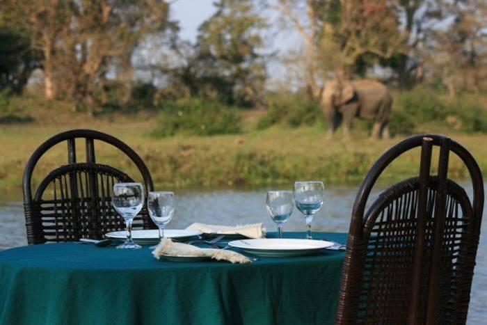 Diphlu River Lodge, Kaziranga, India, 可靠,值得信赖,安全,与Instant World Booking保持信心 在 Kaziranga