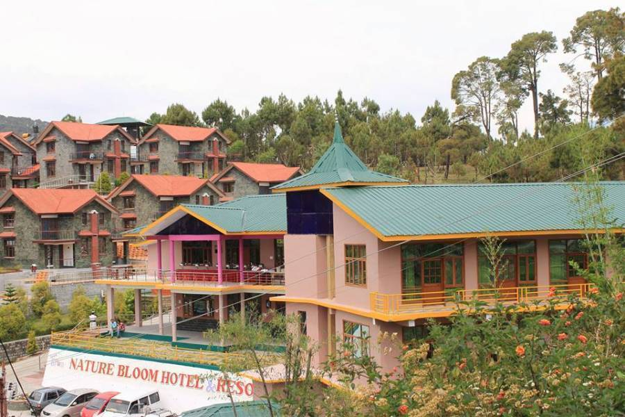 Nature Bloom Resort, Dharmsala, India, India hotels and hostels