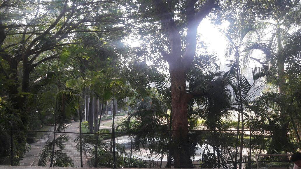 PG Hostels and Backpackers, Mumbai, India, Homoseksuelle hoteller, vandrehjem og B & Bs i Mumbai