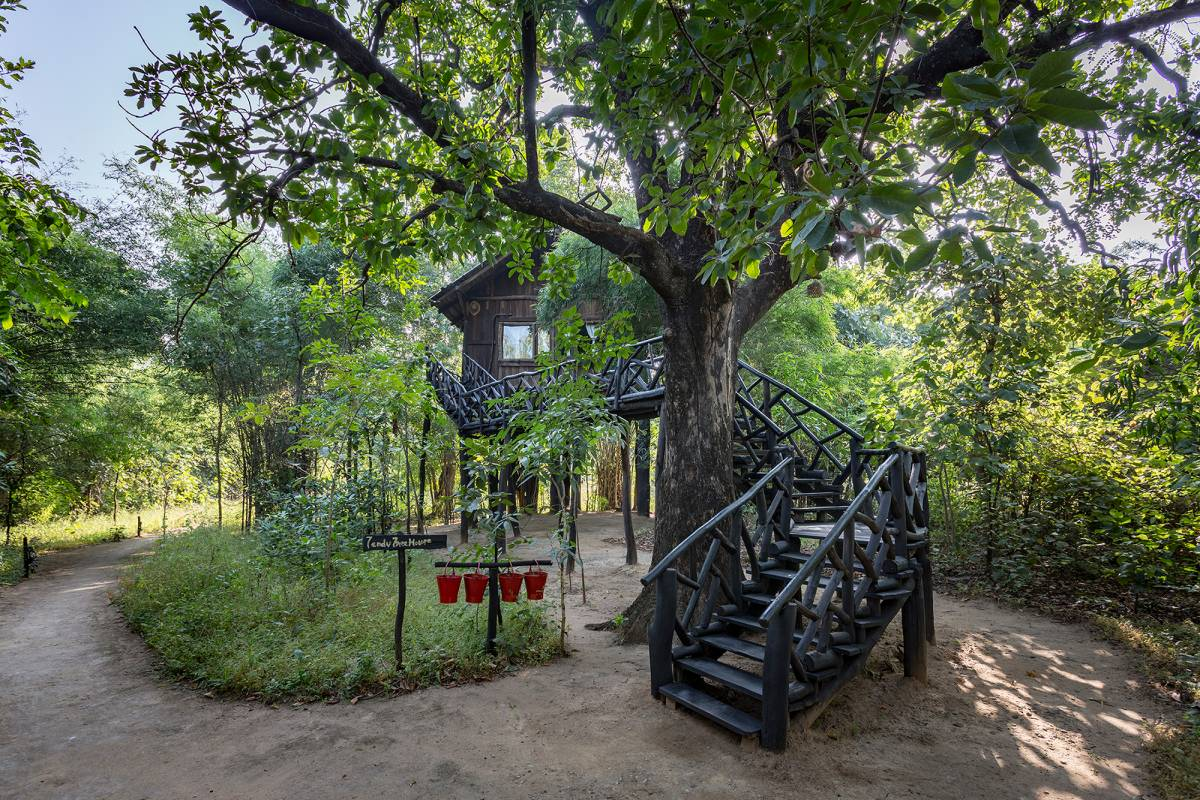Pugdundee Safaris - Tree House Hideaway, Tala, India, 顶级外国酒店 在 Tala