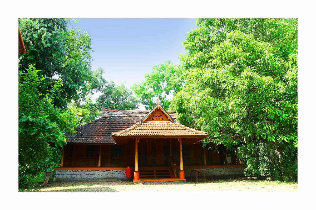 Santhi Yoga Retreat, Kottayam, India, India 酒店和旅馆