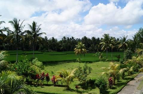 Bhanuswari Resort, Banjar Tengkulak Kelod, Indonesia, Hvordan man kan tilbringe en ferieferie på et hotel i Banjar Tengkulak Kelod