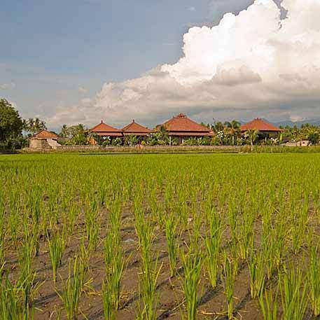 Mumbul Guesthouse, Anturan, Indonesia, backpackers and backpacking hotels in Anturan