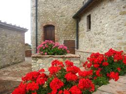Castle Of Bucignano, Castelnuovo di Val di Cecina, Italy, what do you want to see and do?  Explore hotels and activities now in Castelnuovo di Val di Cecina