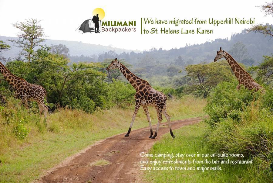 Milimani Backpackers, Nairobi, Kenya, advice and travel gear for staying in hotels in Nairobi