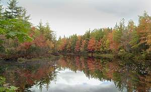Shorelands Guest Resort, Kennebunk, Maine, Бронируйте уникальные отели или общежития и изучайте город, как местный в Kennebunk