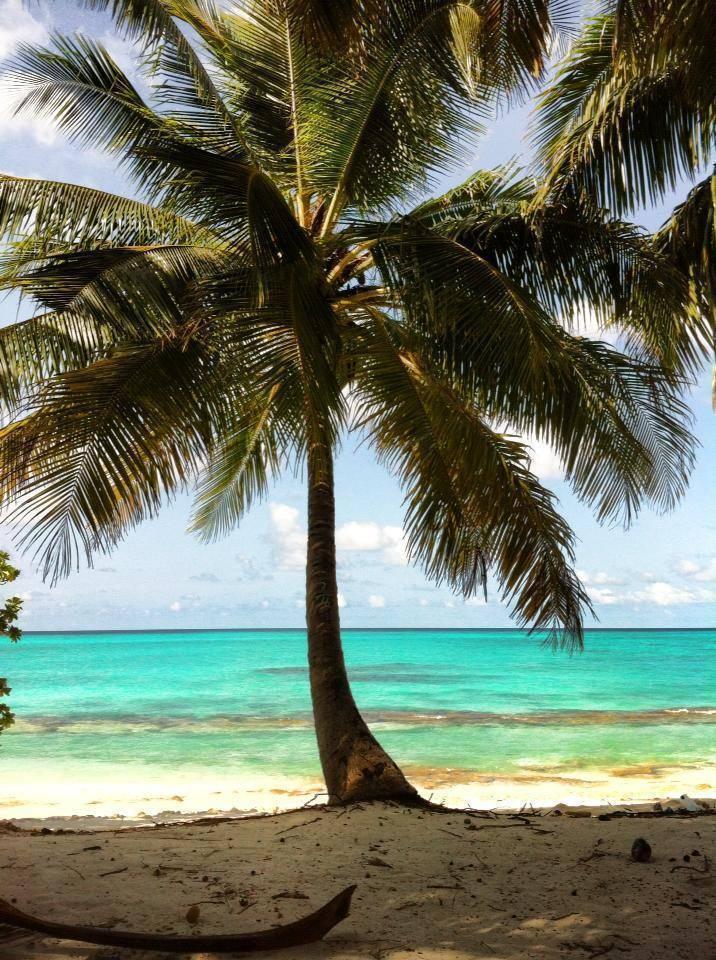 Azoush Tourist Guesthouse, Filitheyo Island, Maldives, Beleef de wereld op culturele bestemmingen in Filitheyo Island