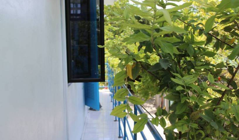 Gulhi Guest House - Search for free rooms and guaranteed low rates in Gulhi Island, cheap hotels 15 photos