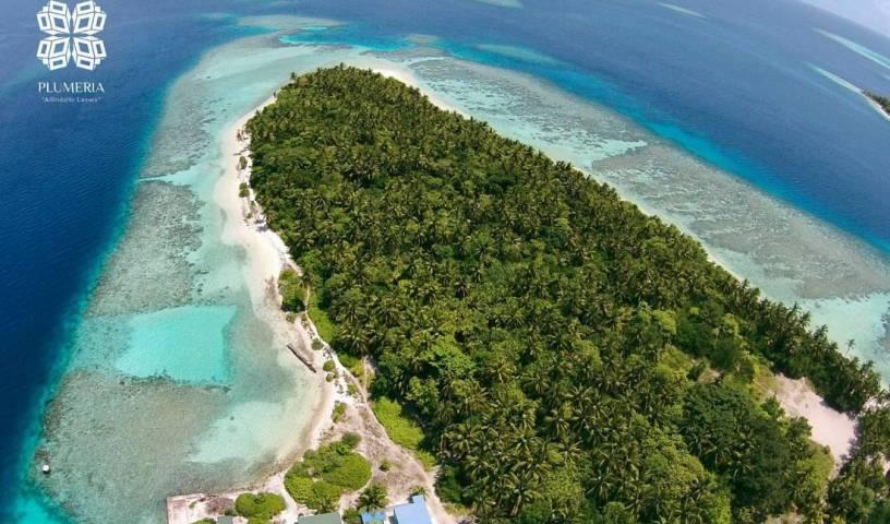 Plumeria Maldives 24 photos